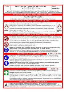 Betriebsanweisung brandschutz